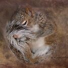 Sleeper by kayzsqrlz