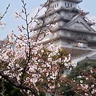 Himeji Castle in Spring, Japan by Margaret Goodwin