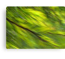 Winter Green Canvas Print