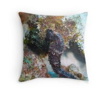 Seahorse in Bonaire Throw Pillow