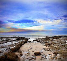 Shelly Beach Lorne 2 by Tamara Dandy