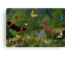 Butterfly joy Canvas Print