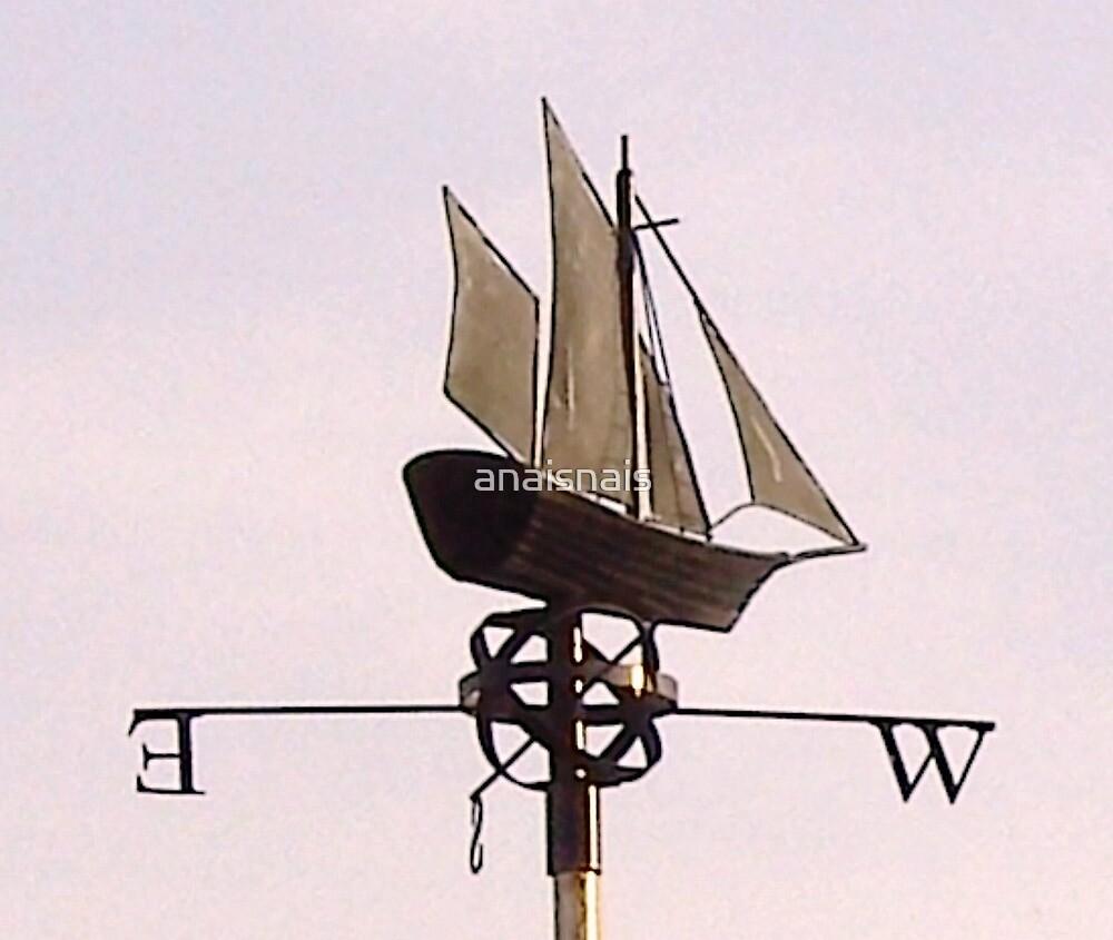 Ship ahoy! by anaisnais