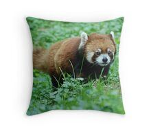 Cute Approach - Cincinnati Zoo Throw Pillow