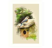 Eastern Bluebird Watercolor Art Art Print