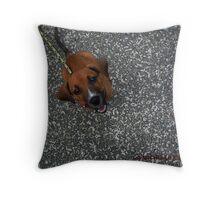 CHOCO NOT CHOCOLATE Throw Pillow