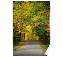 Tunnel of Trees Fall Landscape Poster