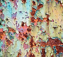 Abstract Paint Peeling by Christina Rollo