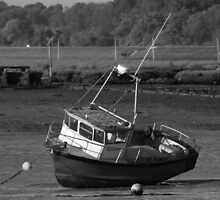 Fishing Boat Stranded on Mud by TonyGeary