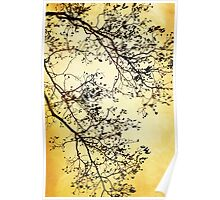 Black and Gold Tree Art Poster