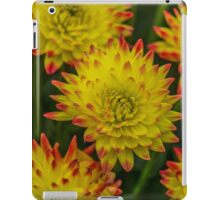 Dahlia Yellow Blooms with Burnt Orange Fringe iPad Case/Skin