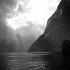 Milford Sound Splendour by Michael Vickery