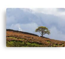 Tree of Triumph Canvas Print