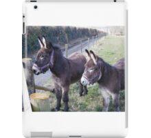 Donkey, donkey iPad Case/Skin