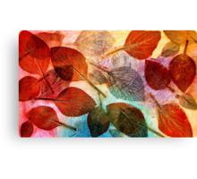 Autumn is Coming to Australia Canvas Print