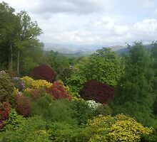 View from Muncaster Castle by Tanya Housham