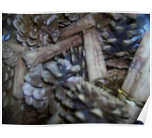 Fir cones and Cinamon sticks make a warm greeting for those colder days Poster