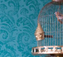 Decorative Bird Cage Sticker