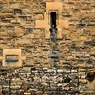 Castle Wall, Edinburgh by Tiffany Dryburgh