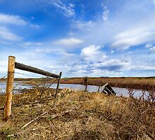 Fence On Flooded Land by Myron Watamaniuk