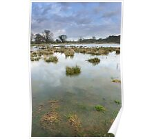 - Water meadows at Chelsworth Poster