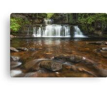 Waterfall Hypnosis Canvas Print