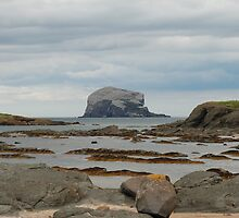 Bass Rock, low tide by Michelle Bailey