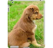 Red TriColor Australian Aussie Shepherd Puppy iPad Case/Skin