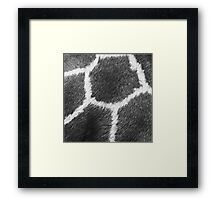 Fur Pattern Framed Print