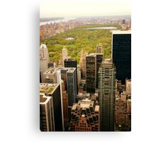 Central Park New York City From Above Canvas Print