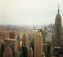 The Empire State Building And NYC's Skyline by Vivienne Gucwa