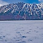 Tagish Lake and Mt Conrad Pan by Yukondick