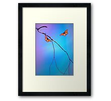 Morning Butterflies Framed Print