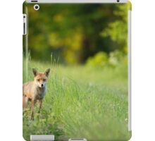 Mr. Fox iPad Case/Skin