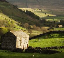 Yorkshire Dales Stone Barn by Penny Dixie
