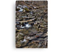Ground Water Canvas Print