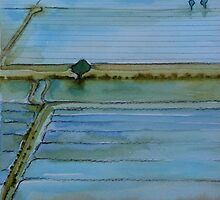Sacramento, Rice fields 2 by Elizabeth Bravo
