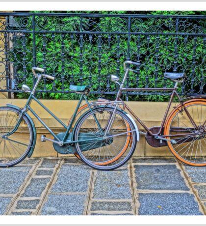 Vintage Bicycles Sticker