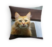 What A View! Throw Pillow