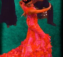 Flamenco by Nigel Fletcher-Jones