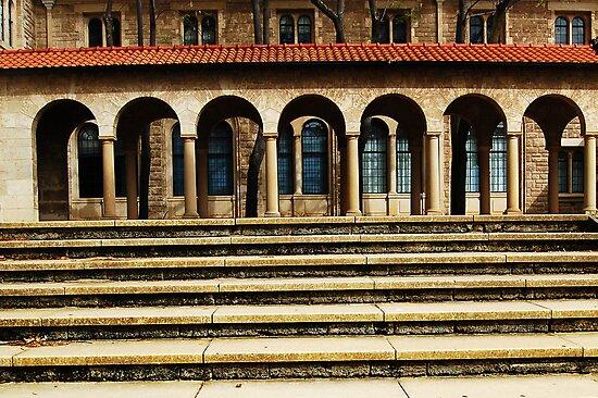 University Steps by Eve Parry