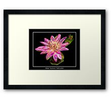 """Pink Waterlily - """"Enameled"""" Special Effect Framed Print"""