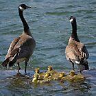Family portrait at Lake Coeur d'Alene by Kate Farkas