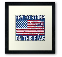 Try to Stomp on this Flag Framed Print