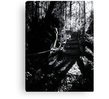 Steps to Paradise? Canvas Print