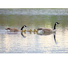 the family life... Photographic Print