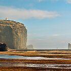 Vantage Point - Dyrhólaey, Iceland by Matthew Kocin