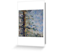 Fir Tree Sky  Greeting Card