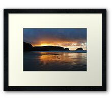 A Lone Oystercatcher Framed Print
