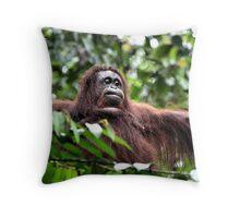 Large Female Orangutan, Borneo  Throw Pillow